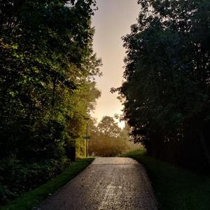 Pixelfed Photo: Unreal light on today's run